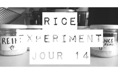 Rice Experiment J14