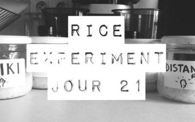 Rice Experiment J21 – Dernier jour